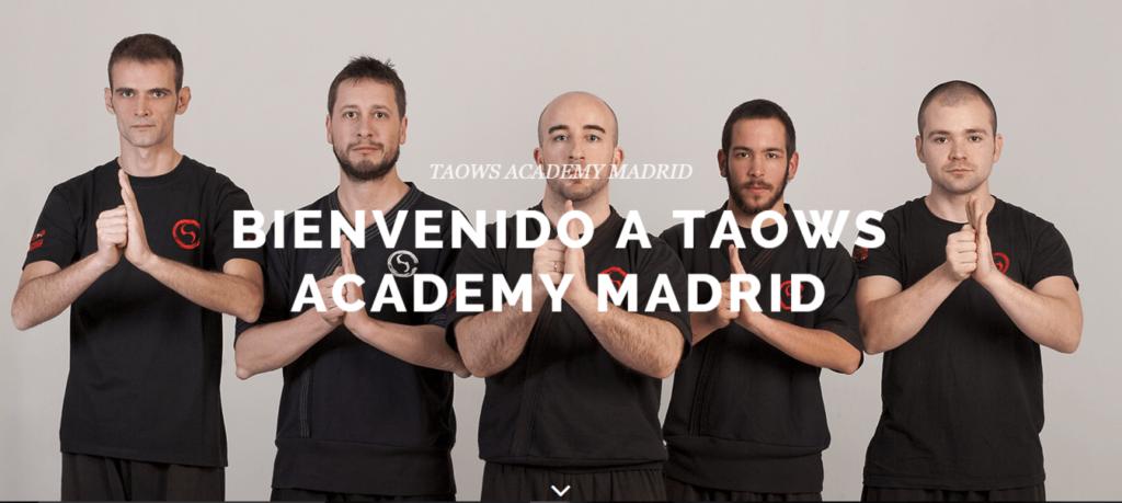 Wing Tsun Madrid